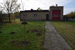 drzewa_20201030_01